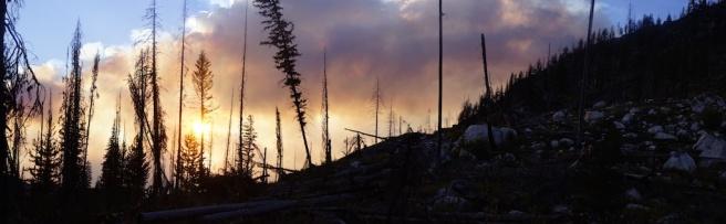wildernessfire