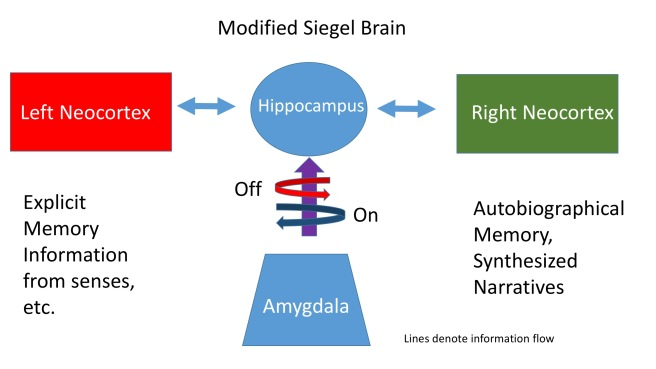 Modified Siegel Brain