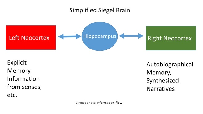 Simplified Siegel Brain
