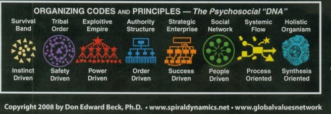 spiraldynamics social structures